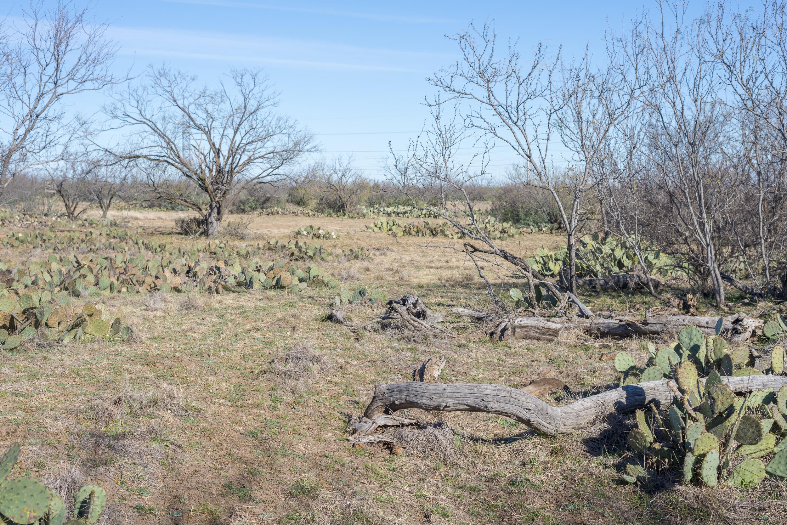 Arden 266 Sold Behrens Ranch Sales
