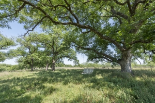 Concho County, Texas (10)