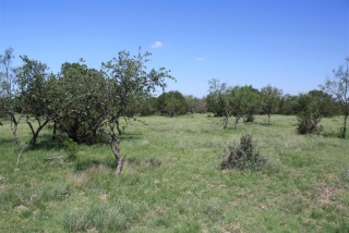 Crockett County, Texas (8)