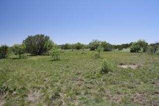 Schleicher County, Texas (3)