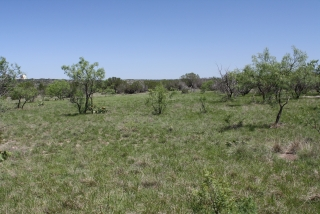 Schleicher County, Texas (8)