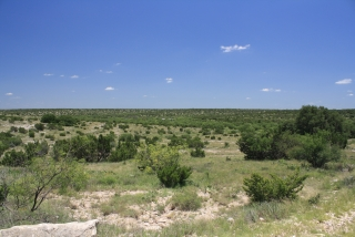 Sterling County, Texas (4)