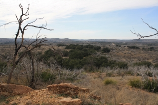 Coke County, Texas (6)