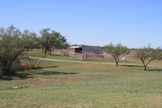 Mitchell County, Texas (5)