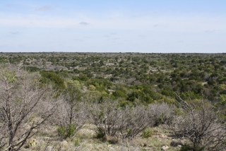 Crockett County, Texas (7)