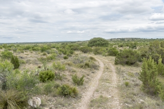 Tom Green County, Texas (9)