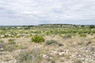 Tom Green County, Texas (4)