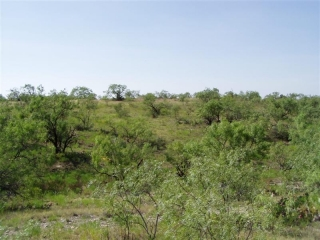 Runnels County, Texas (10)