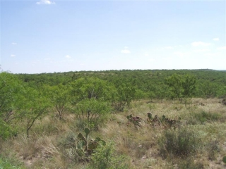 Runnels County, Texas (11)