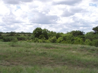 Tom Green County, Texas (7)