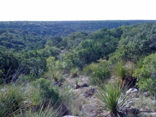 Crockett and Sutton Counties, Texas (5)