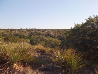 Crockett and Sutton Counties, Texas (7)