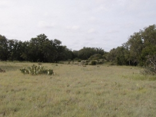Schleicher County, Texas (4)