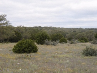 Schleicher County, Texas (5)
